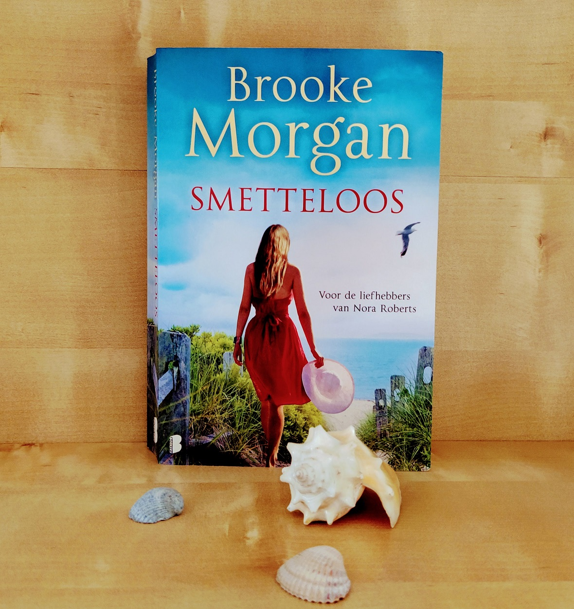 Boek review; Smetteloos – Brooke Morgan