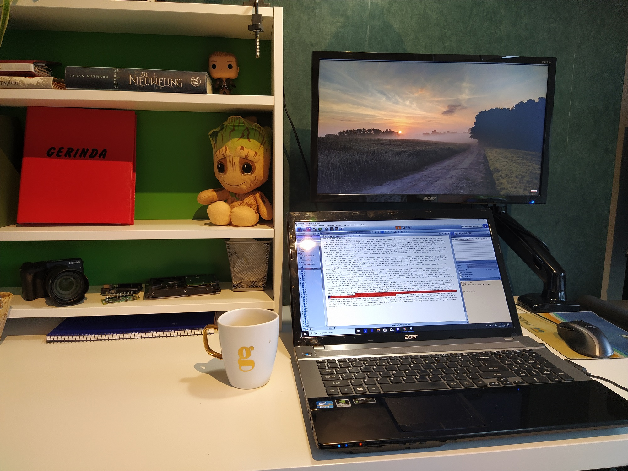 Ik ben een boek aan het schrijven! NaNoWriMo dag 1-10