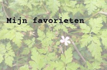 Mijn Favorieten