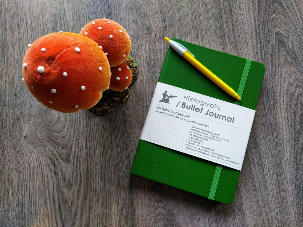 NaNoWriMo bullet journal goalgift